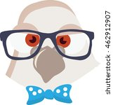 Pigeon Vector illustration. Young bird with geek eyeglasses and nerd bow tie. Illustration in cartoon style. Vector image of a hipster or geek bird face with a nerd glasses. - stock vector