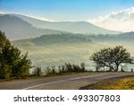 old asphalt road going through the hillside and passes green forest - stock photo