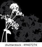 Black and white background with inflorescence - stock photo