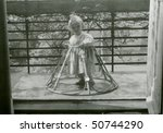 Vintage photo of young child, 1955 - stock photo