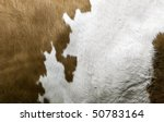 Texture of a Cow Coat - stock photo