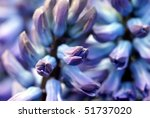background with a close up flower - stock photo