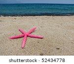 seastar - stock photo