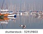 Sailing boats and wild ducks in turkish marine - stock photo