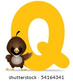 Q for Quail - Vector - stock vector