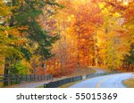 A road and a path diverge in a glowing autumn woods - stock photo