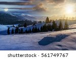day and night concept image of spruce forest on a meadow full of snow in mountains - stock photo