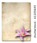 pink lily flower old brown grunge paper - stock photo