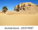 Lonely palm's tree in the Sahara desert, Egypt - stock photo