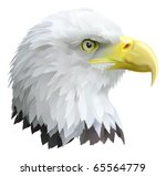 Illustration of a eagles head in profile. - stock vector