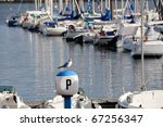 Seagull sitting at yacht harbor in Brest, Brittany in France - stock photo