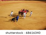 """SEVILLE - APRIL 30: The dead bull is dragged from the ring after Bullfighter David Fandila """"El Fandi"""" kills him for a sold out crowd at the Plaza de Toros de Sevilla April 30, 2009 in Seville, Spain. - stock photo"""