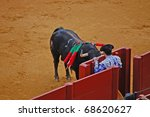 SEVILLE - APRIL 30:  A bull crashes into a gate as the torero seeks shelter during a bullfight for a sold out crowd at the Plaza de Toros de Sevilla April 30, 2009 in Seville, Spain. - stock photo
