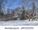 Freshly fallen snow in Central Park in Manhattan with buildings in the background. - stock photo