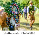 PERTISAU, AUSTRIA - SEPTEMBER 15: adorned cow at the annual Almabtrieb on September 15, 2017 in Pertisau - stock photo