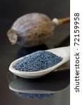 Poppy capsule and seeds on a wooden spoon. - stock photo