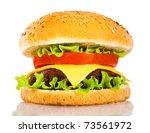 Tasty and appetizing hamburger on a white background - stock photo