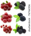 Blackberry with cranberry - stock photo