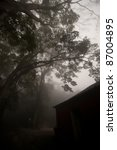 House in foggy woods - stock photo