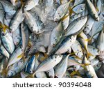 Fresh mackerel in the market - stock photo