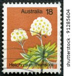 AUSTRALIA - CIRCA 1975: A stamp printed in Australia shows Helichrysum thomsonii, series, circa 1975 - stock photo