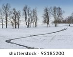 Winter country scene with trees and a path. - stock photo