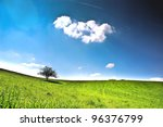 Lonely tree on a green meadow with a big white cloud and a blue sky - stock photo