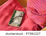 Book on an armchair, spectacles, blanket and cushion - stock photo