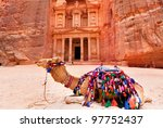 Bedouin camel rests near the treasury Al Khazneh carved into the rock at Petra, Jordan - stock photo