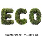 ECO word formed from moss isolated on white - stock photo