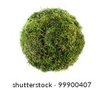 Sphere formed from moss isolated on white - stock photo