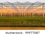 background of a commercial greenhouse - stock photo