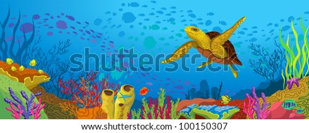 colored coral reef with