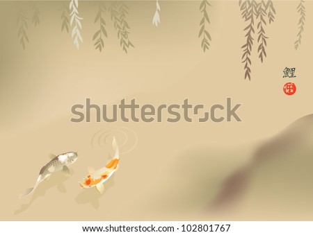 koi carps in stream the vector