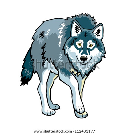 wolf vector picture standing