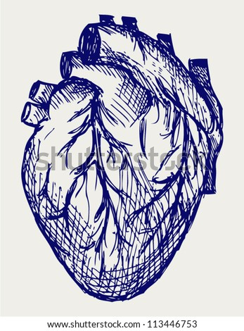 human heart doodle style