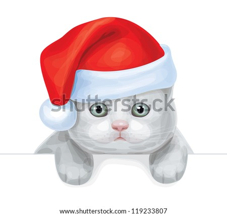 vector of cute kitten  in santa'