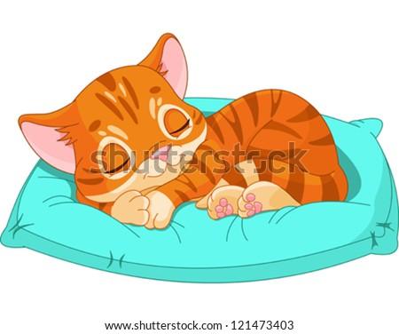 cute kitten sleeping on the