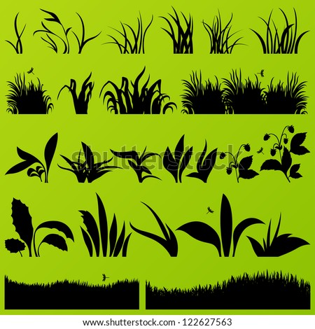 grass and plants detailed