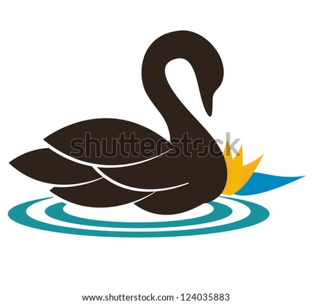 beautiful swan illustration