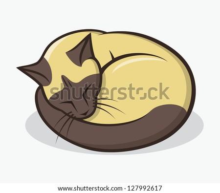 sleepy siamese cat   vector