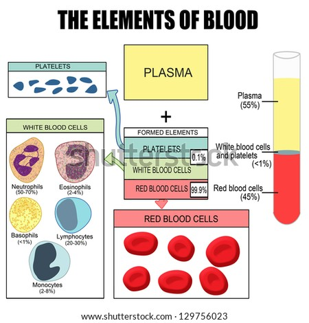the elements of blood  useful