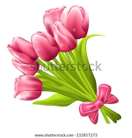 tulip bouquet vector