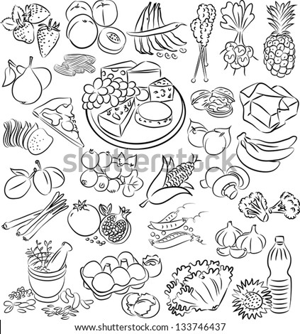 vector illustration of  food