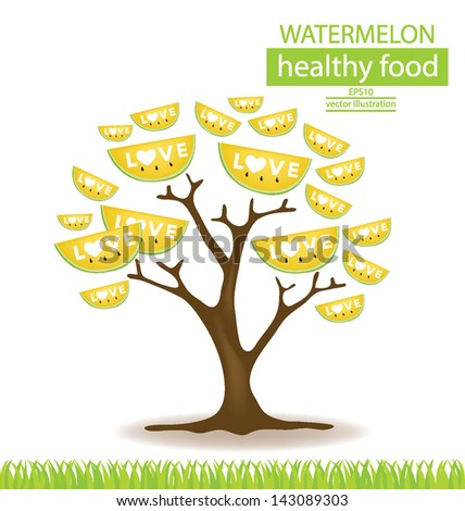 watermelon tree vector