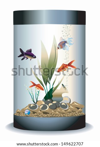 aquarium with fishes