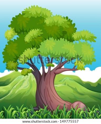 illustration of a big old tree