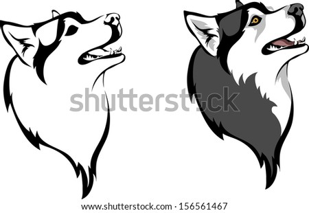 head dog breed siberian husky