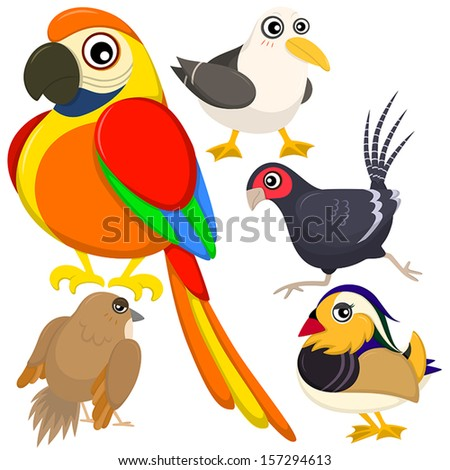five colorful cute birds with