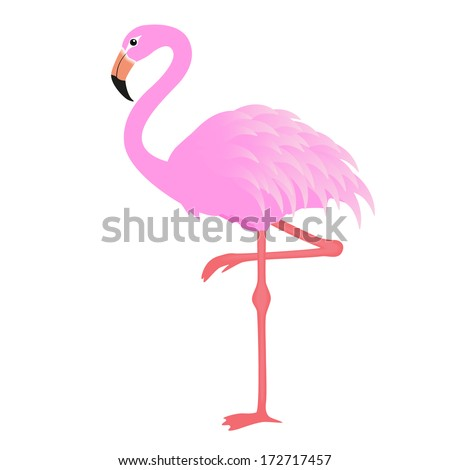 flamingo raster version